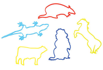 Gospel Light Vacation Bible School 2013 SonWest RoundUp Western Critter Silly Bands (pkg25)