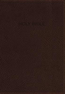 NIV Foundation Study Bible, Indexed