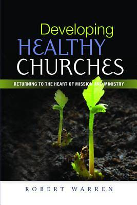 Developing Healthy Churches [ePub Ebook]
