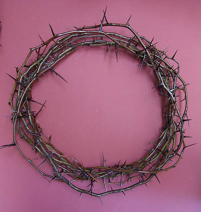 Crown of Thorns - Large Wall 20""