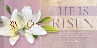 He Is Not Here, For He Is Risen Offering Envelope