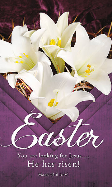 Picture of He Has Risen! Easter 3' x 5' Fabric Banner