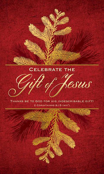 Picture of Celebrate the Gift of Jesus Christmas 3' X 5' Fabric Banner