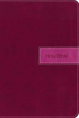 NIV, Gift Bible, Imitation Leather, Pink, Indexed, Red Letter Edition (Special)