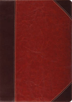 Picture of English Standard Version Study Bible