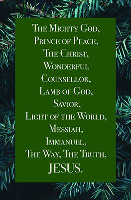 Picture of Jesus Bulletin (Pkg 100) Christmas
