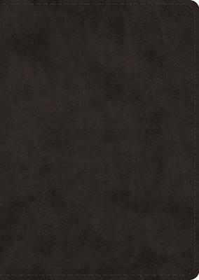 Picture of ESV Study Bible, Large Print (Trutone, Black)