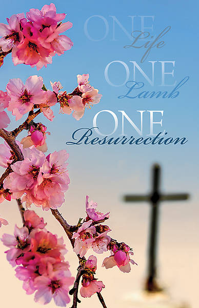 One Life, One Lamb, One Resurrection Easter Regular Size Bulletin