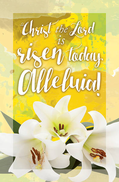 Picture of Christ the Lord is Risen Today Easter Bulletin (Pkg of 50)