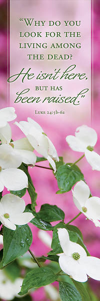 Picture of He Isn't Here Easter Bookmark (Pkg of 25)