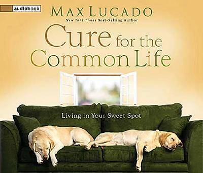 The Cure for the Common Life CD