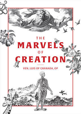 Picture of The Marvels of Creation