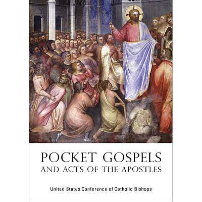 Picture of Pocket Gospels and Acts of the Apostles