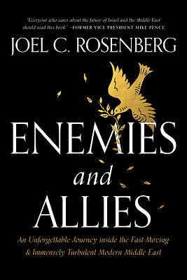 Picture of Enemies and Allies