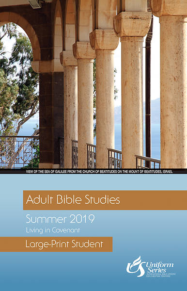 Picture of Adult Bible Studies Summer 2019 Student [Large Print]