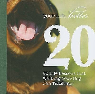 Picture of 20 Life Lessons That Walking Your Dog Can Teach You