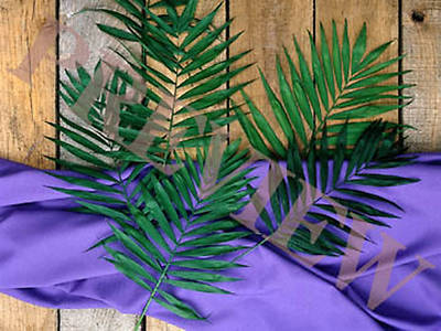 Download Still Palms, Purple Cloth, Wood Background