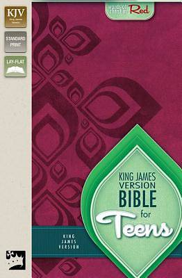 Picture of Bible for Teens-KJV