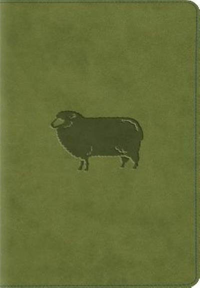 ESV Kids Compact Bible (Trutone, Green Pastures)
