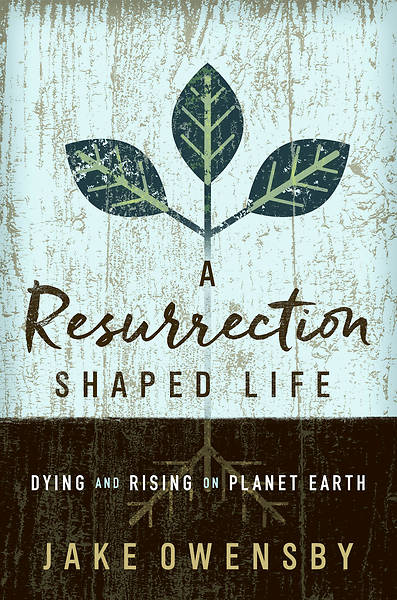 Picture of A Resurrection Shaped Life - eBook [ePub]