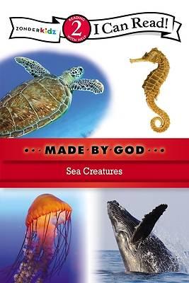 Picture of Sea Creatures