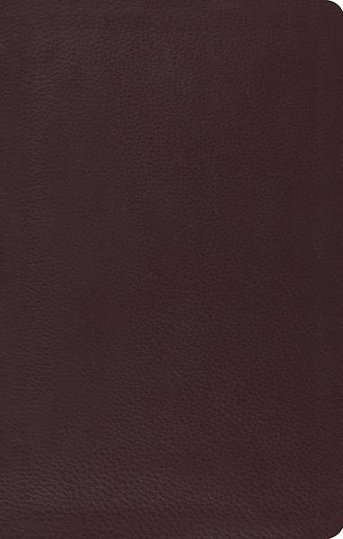 ESV Ultrathinline Bible