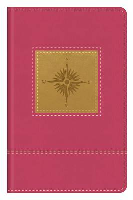 Picture of Go-Anywhere KJV Study Bible (Primrose Compass)