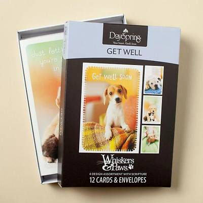 Whiskers & Paws - Get Well Boxed Cards - Box of 12