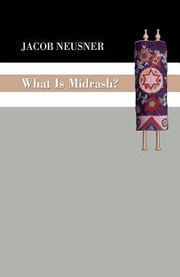 Picture of What Is Midrash?