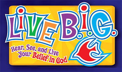 Picture of Live BIG Summer DVD Kit Special Offer 2008 Tweens
