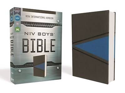 NIV Boys Bible Leathersoft Gray/Blue