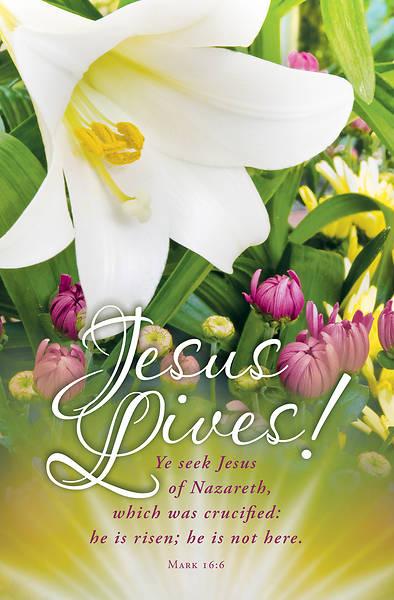 Picture of Jesus Lives Easter Regular Size Bulletin