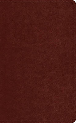 Picture of ESV Pocket Bible (Trutone, Chestnut)