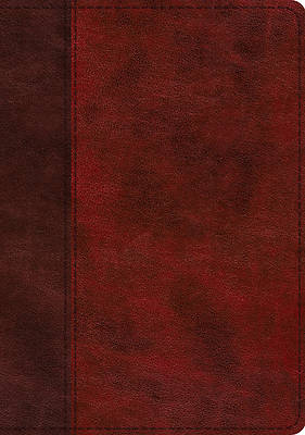 Picture of ESV Study Bible (Trutone, Burgundy/Red, Timeless Design, Indexed)