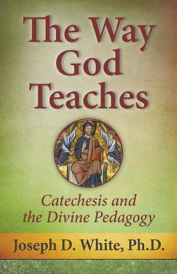 Picture of The Way God Teaches