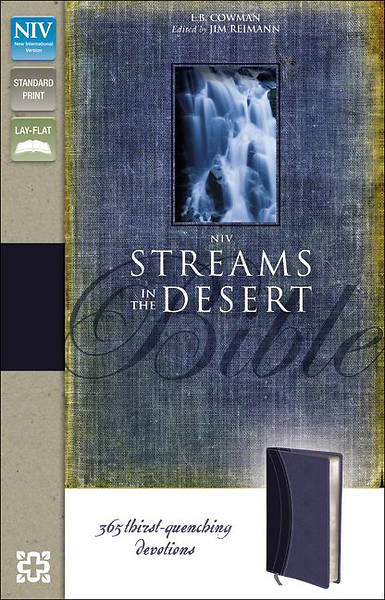 NIV Streams in the Desert Bible