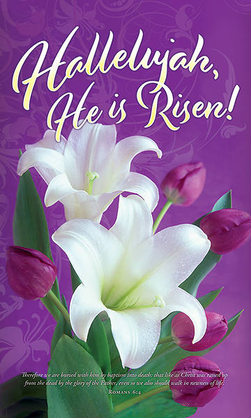 Picture of Hallelujah He is Risen! Easter 3' x 5' Fabric Banner