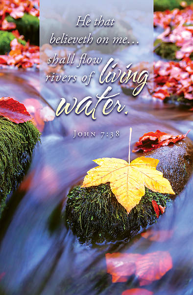 Picture of Living Water General Regular Size Bulletin