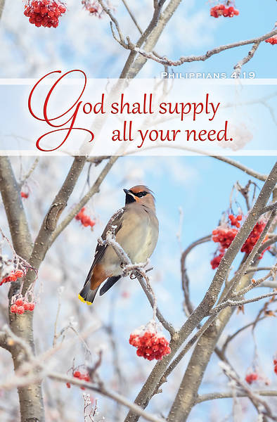 Picture of Bird in Berry Tree Bulletin Regular Philippians 4:19