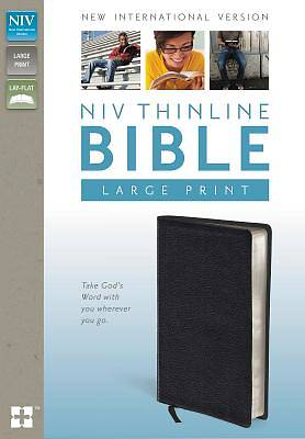 Bible NIV Thinline Large Print