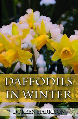 Picture of Daffodils in Winter