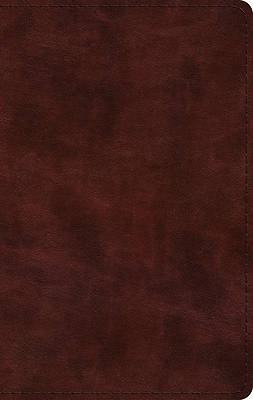 Picture of ESV Large Print Thinline Bible (Trutone, Mahogany)