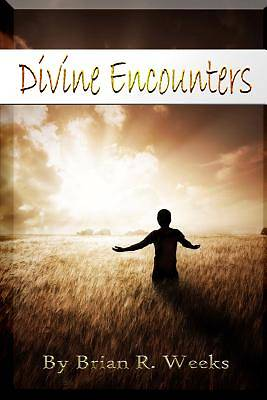 Picture of Divine Encounters