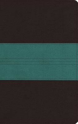 Picture of ESV Large Print Personal Size Bible (Trutone, Dark Brown/Teal, Trail Design)