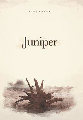 Picture of Juniper