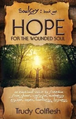Hope for the Wounded Soul, Soulcry Book 1