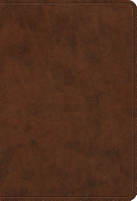 ESV Value Large Print Compact Bible (Trutone, Brown)