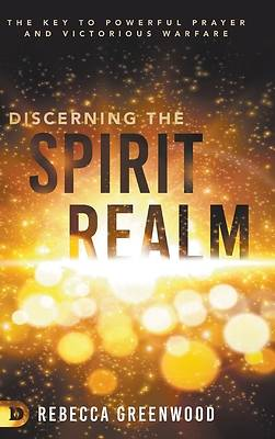 Picture of Discerning the Spirit Realm