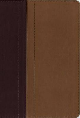 NIV Quest Study Bible Indexed Imitation Leather Burgundy/Tan