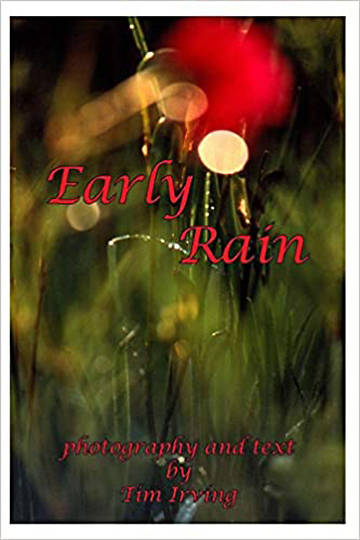 Picture of Early Rain (Early Rain Series)